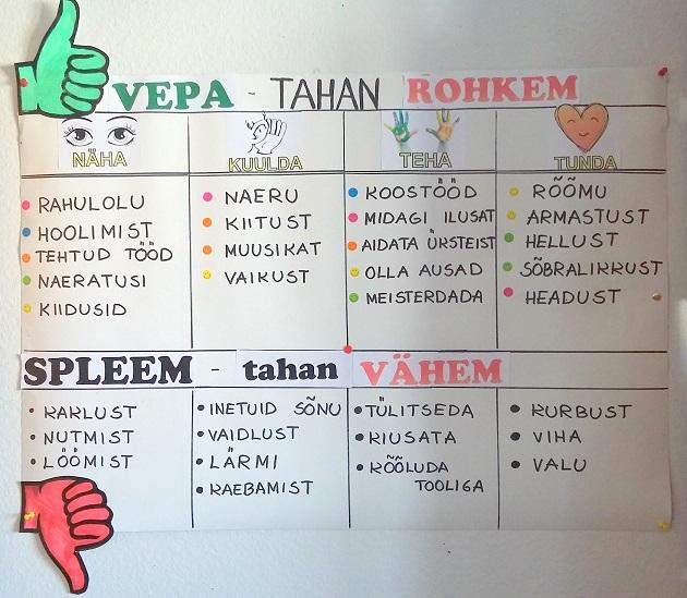 VEPA visioon